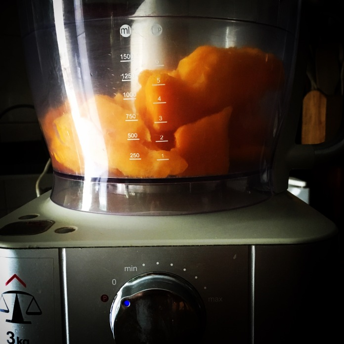 mango-in-a-food-processor