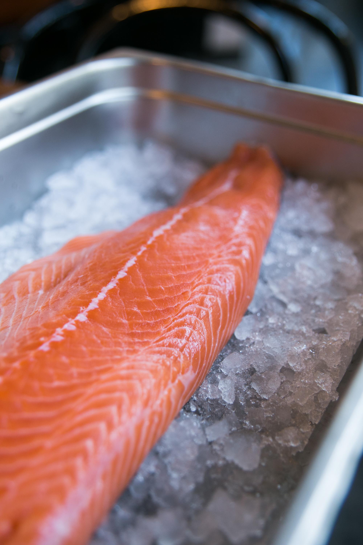 salmon-tail