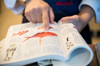 japanese snapper info book