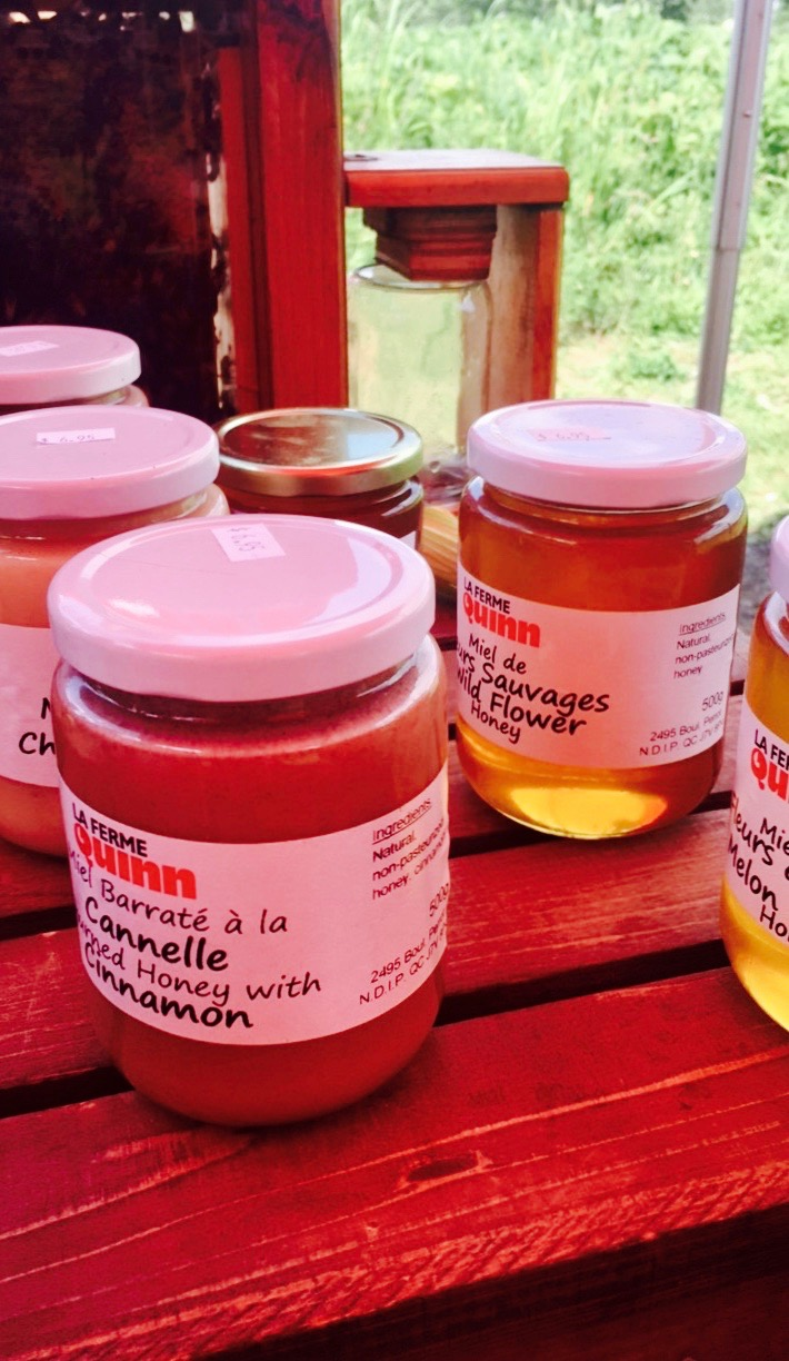 Honey jrs from Quinn Farm
